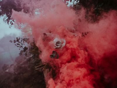 烟雾玫瑰气氛拍摄