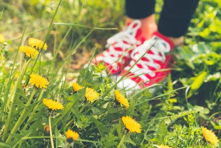 在草和蒲公英的红色快乐的鞋子