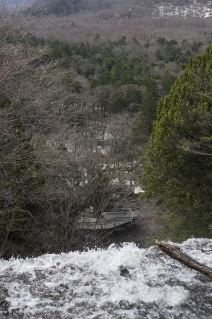 从瀑布看到的Senjogahara的免费照片素材