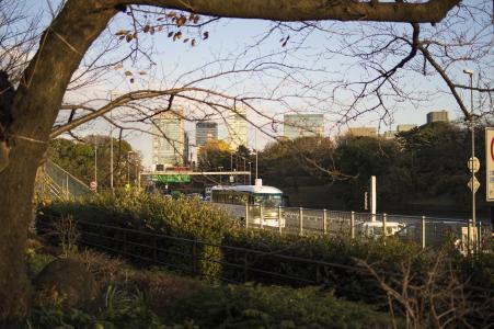 资本高从Chidorigafuchi看到免费照片