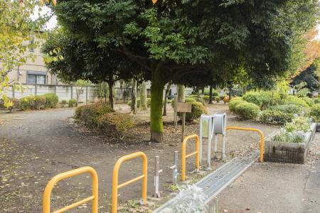 吉祥寺南美町树苗场公园免费照片