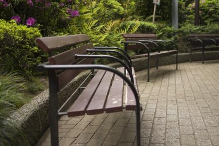 公园长椅免费照片