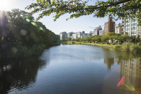 福冈Ohori公园免费图片