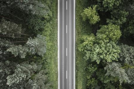在森林空中的寂寞路