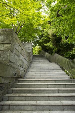 在公园里的楼梯免费股票照片