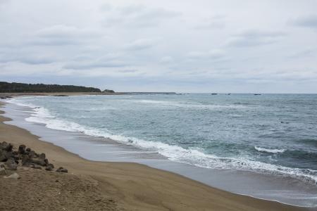 Kimegahama海滩免费图片