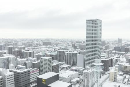 札幌Odori风景在冬天免费图片