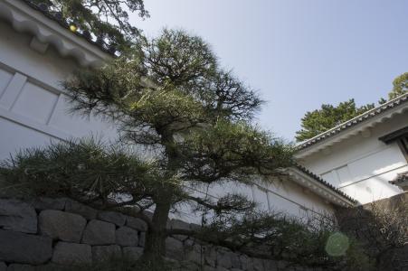 小田原城墙免费照片