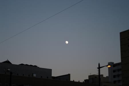 月亮免费股票照片