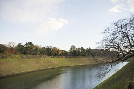 自然免版税库存照片在故宫附近