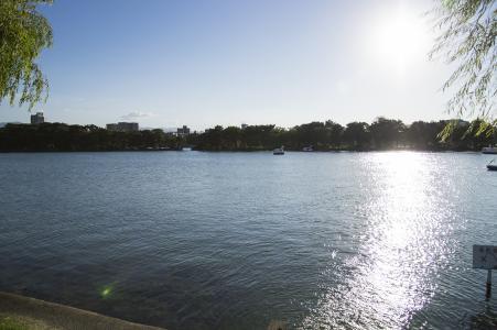 免费图片福冈大濠公园的池塘