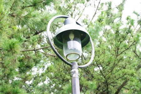 电灯(Kasai Rinkai Park)免费图片