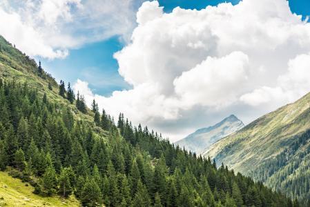 在罗马尼亚山脉的美丽的自然