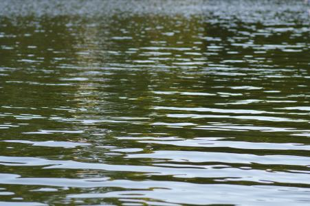Water免费图片