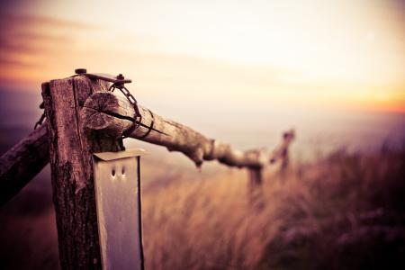在山行迹的自然木篱芭