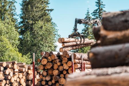 木材卡车登录林业作业