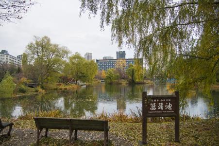中岛公园(伊拉捅)免费图片