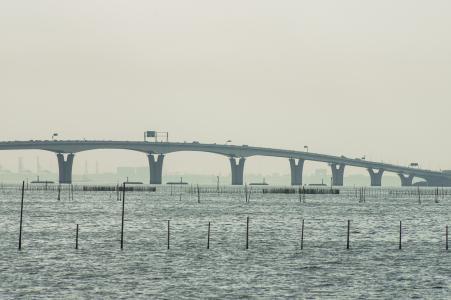 东京湾水色桥免费股票照片