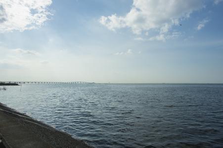 东京湾和水色桥免费股票照片