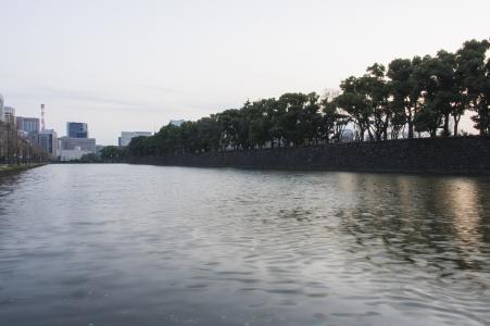 故宫皇宫的免费照片