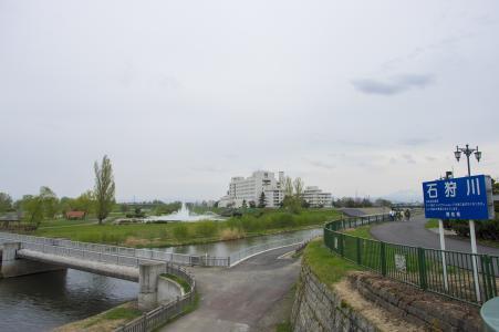 Ribelain旭川公园·花地免费照片