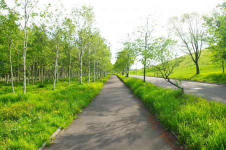 Moerenuma公园免费图片