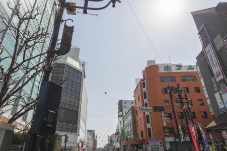 小田原市街道免费材料