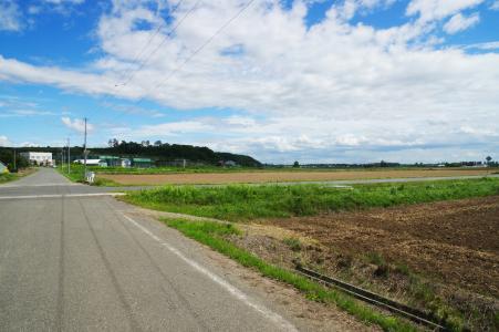 北海道石垣场的免费照片