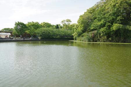 Tennoji Park免费图片