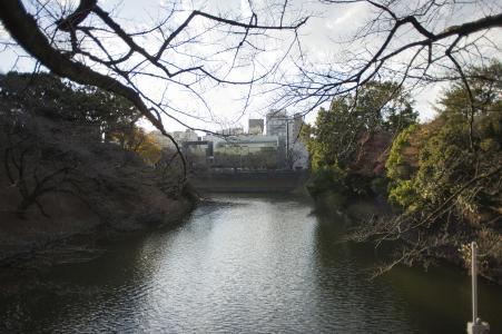 Chidorigafuchi免费图片