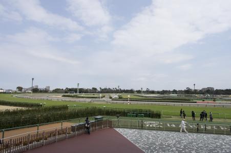 Nakayama Racecourse免费图片