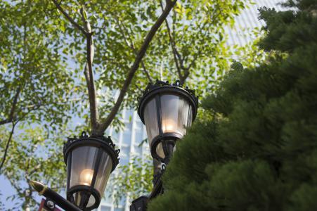 街头照片中的街灯