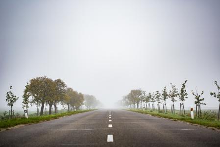 有雾的路向无处