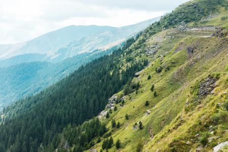 在罗马尼亚乡下美妙的山