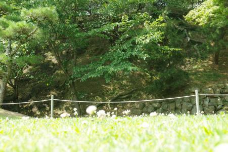 石垣和自然免费图片姬路城堡