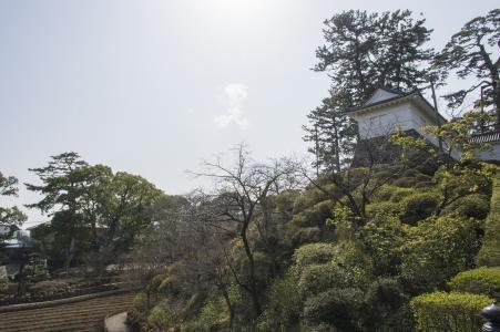 大自然的小田原城堡免费照片