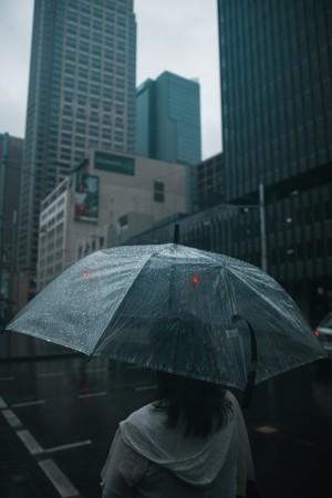 撑着透明雨伞的女子