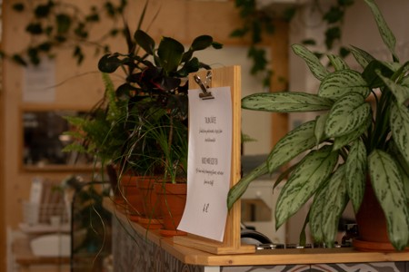吧台上的绿植盆栽