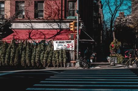 斑马线街景照片