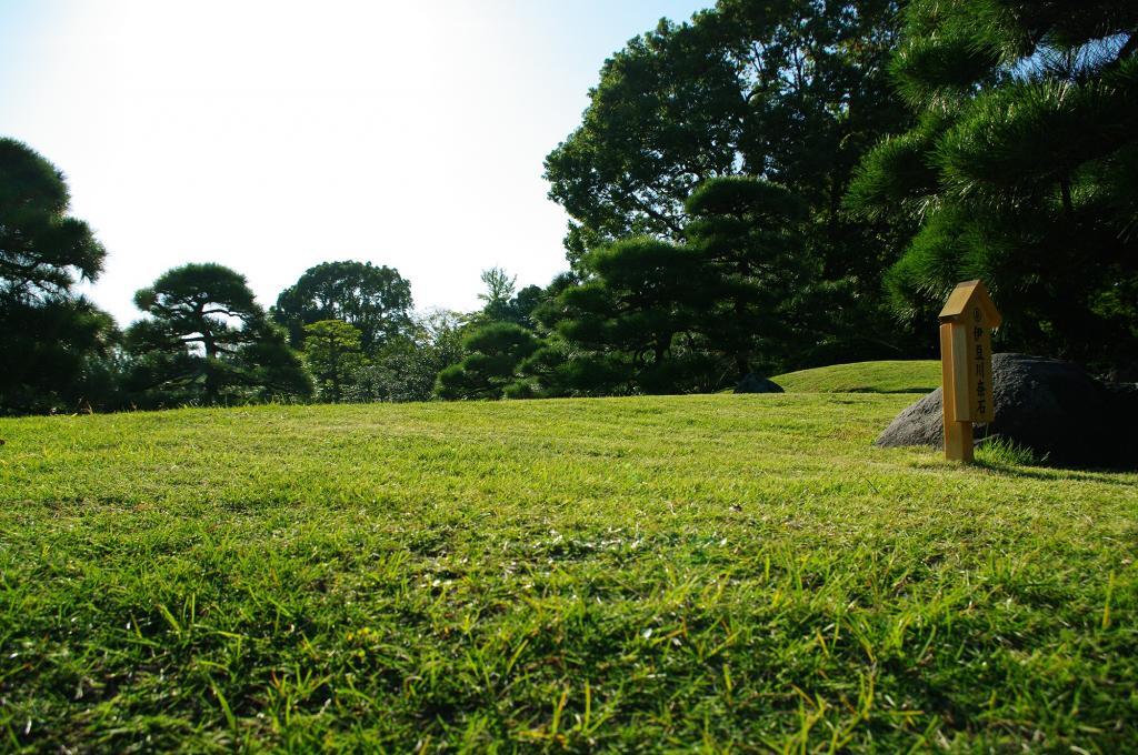 清澄花园 - 草坪 - 免费照片