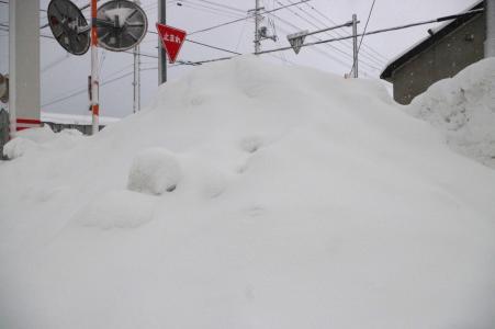 冬季免费股票照片