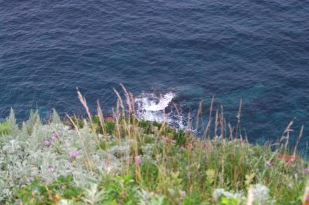 神圣海角免费图片