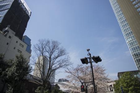 免费图片在赤坂Sacas附近