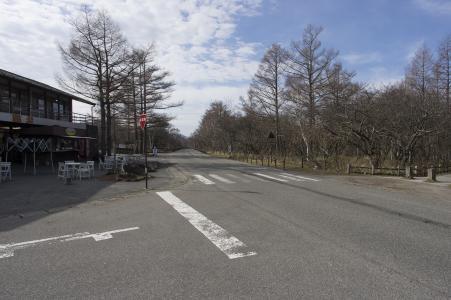 国道120附近Senjogahara免费照片