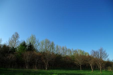 前田森林公园免费图片