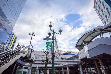 柏站前的免费照片