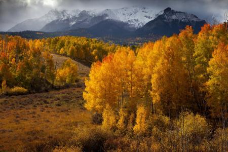 金秋十月山林风景