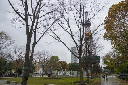 大通公园和电视塔免费图片