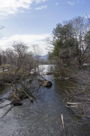 Yuno湖附近的风景照片