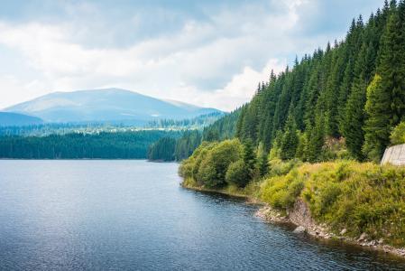 湖岸和森林风景在罗马尼亚